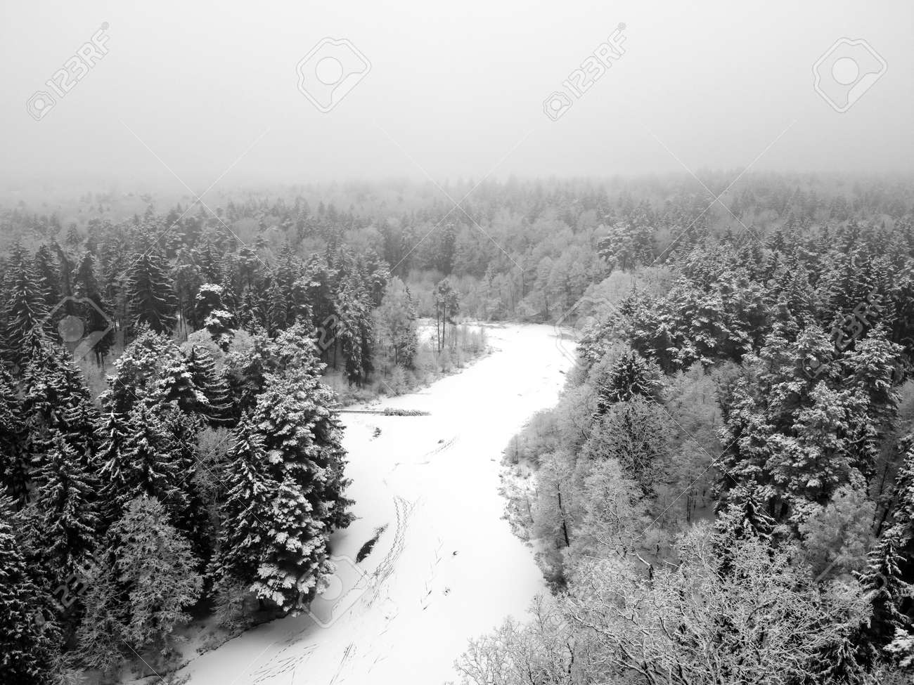 Winter forest with snowy trees, aerial view. Winter nature, aerial landscape with frozen river, trees covered white snow. Black and white photography - 171676192