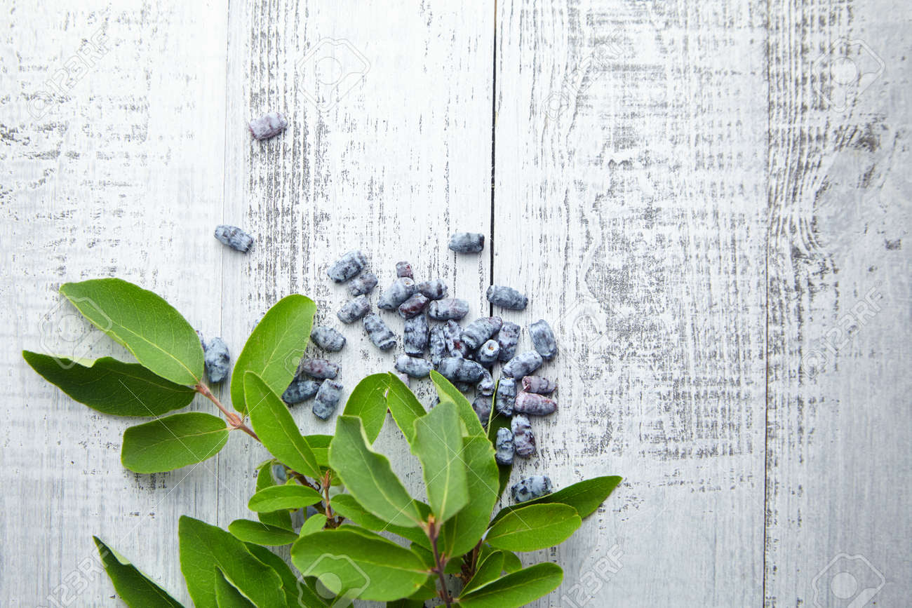 Honeyberry (Lonicera caerulea) on gray wooden background, top view. Heap of sweetberry honeysuckle (Haskap berry) with fresh green leaves - 171676218