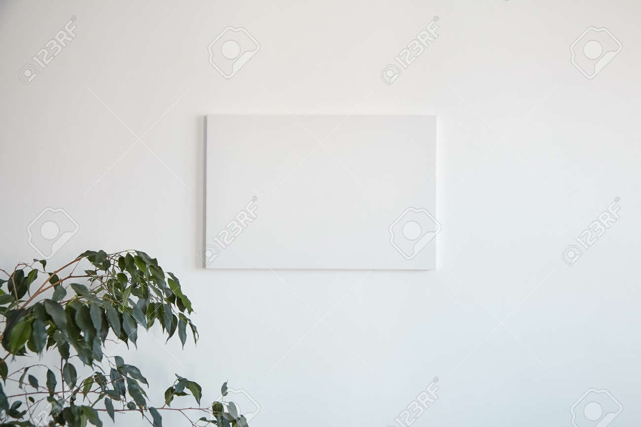 Canvas mockup hanging on white wall and green leaves of houseplant. Blank artistic canvas - 171629815