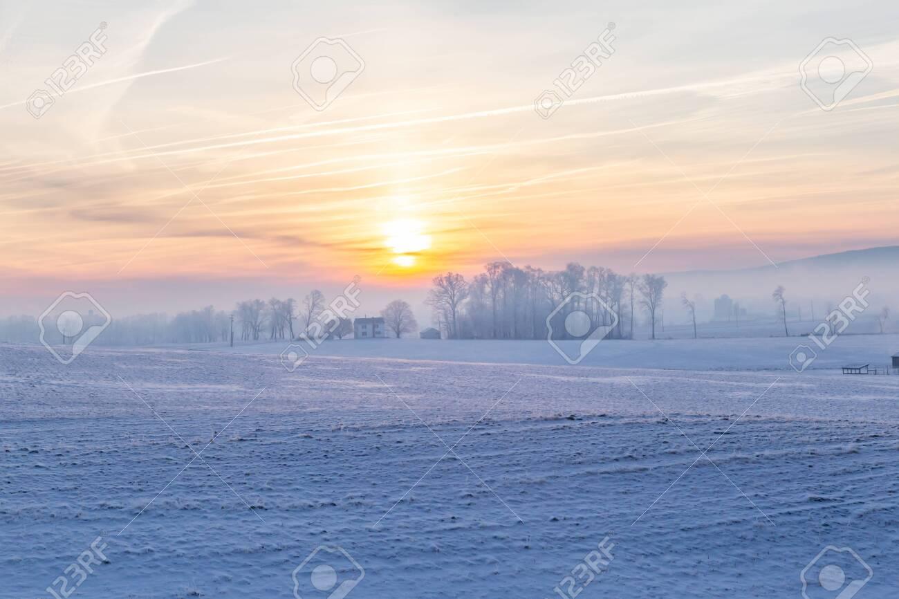 Snowy Fields - 133801954