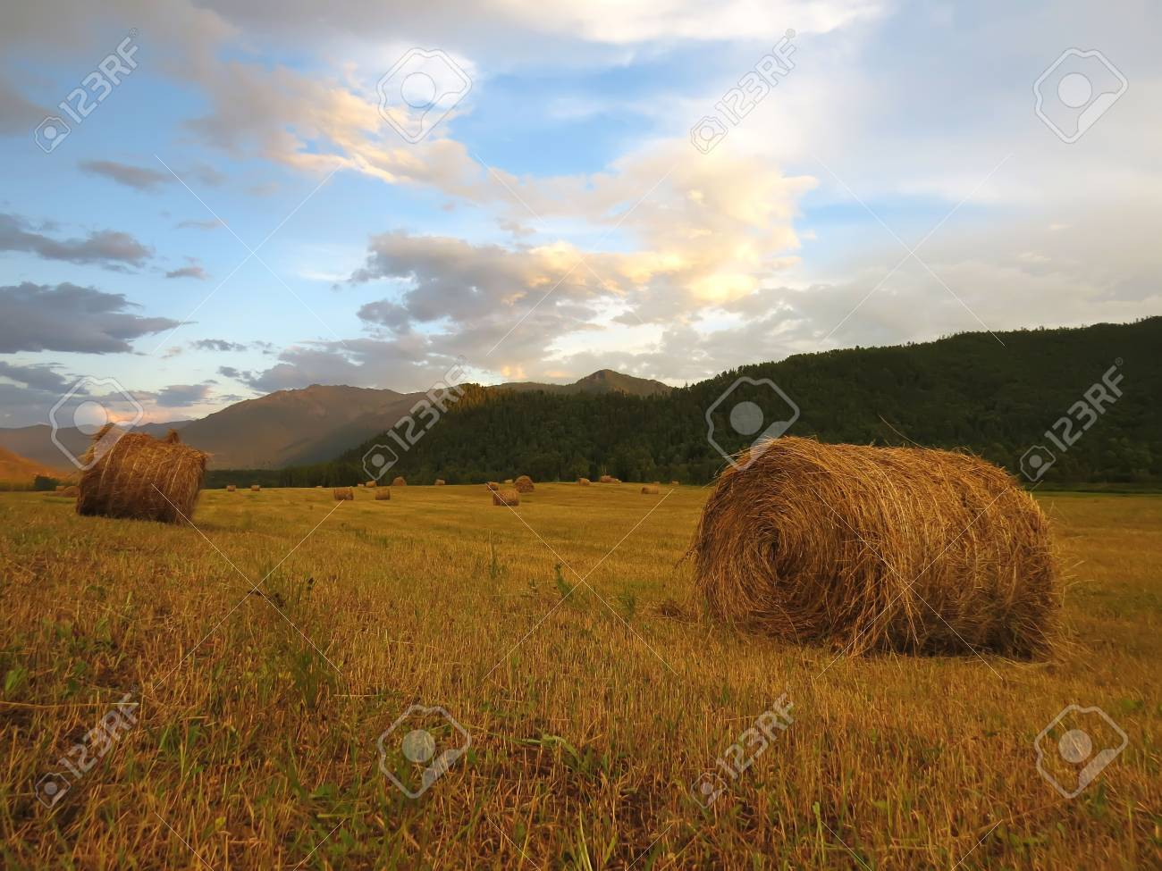 Rolls Of Hay Among The Mountains