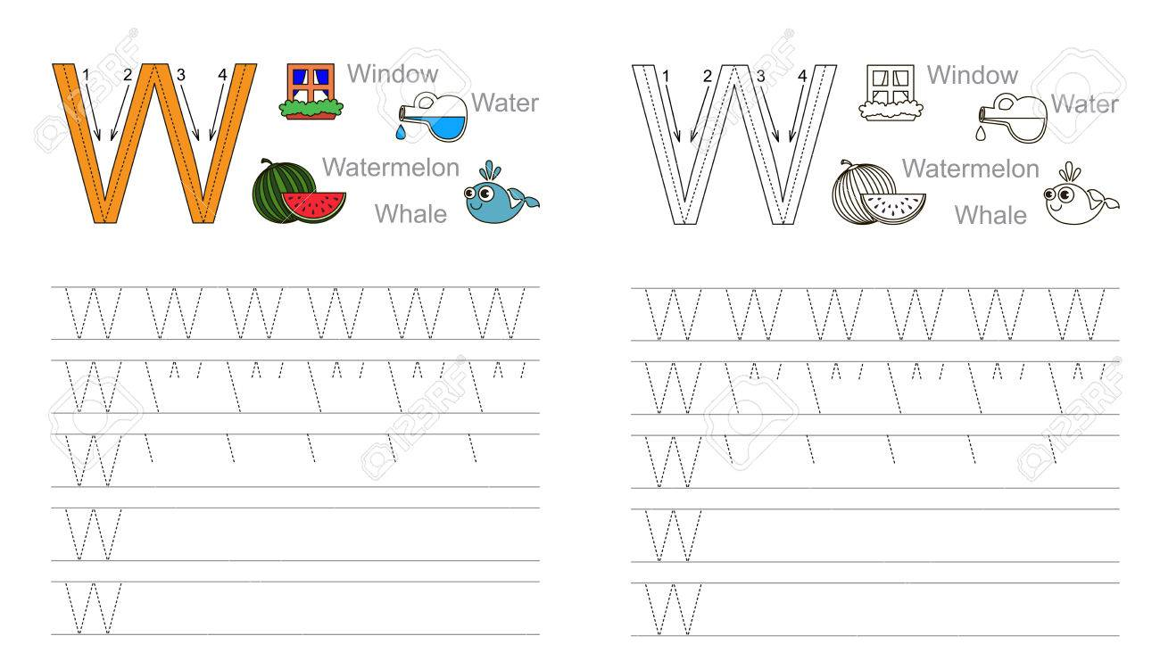 Worksheet Learn Handwriting vector exercise illustrated alphabet learn handwriting page to be colored tracing worksheet for letter w