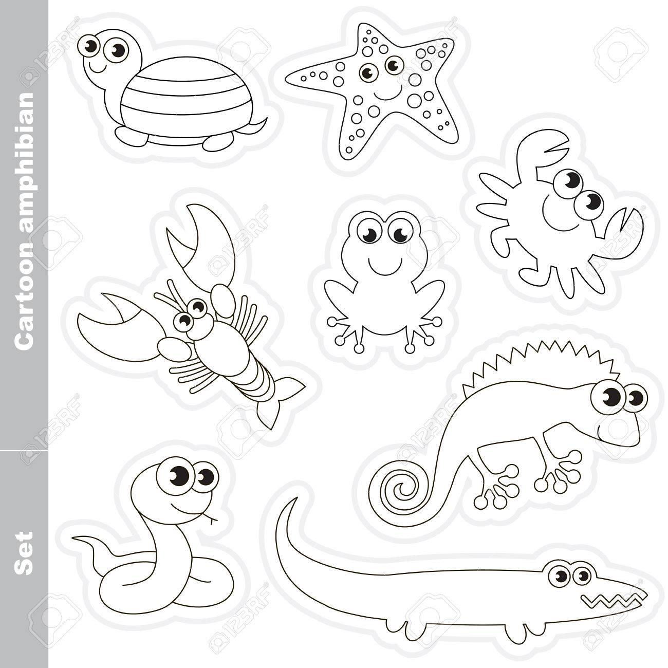 Incolora Conjunto De Anfibios En El Vector En Virtud De Animales