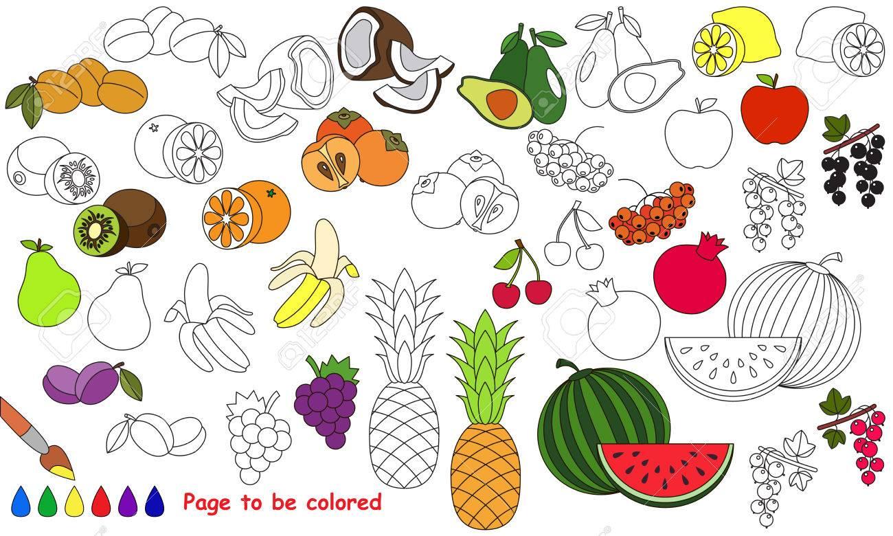 Gran Conjunto De Frutas De Verano Que Ha De Colorearse. Libro De ...