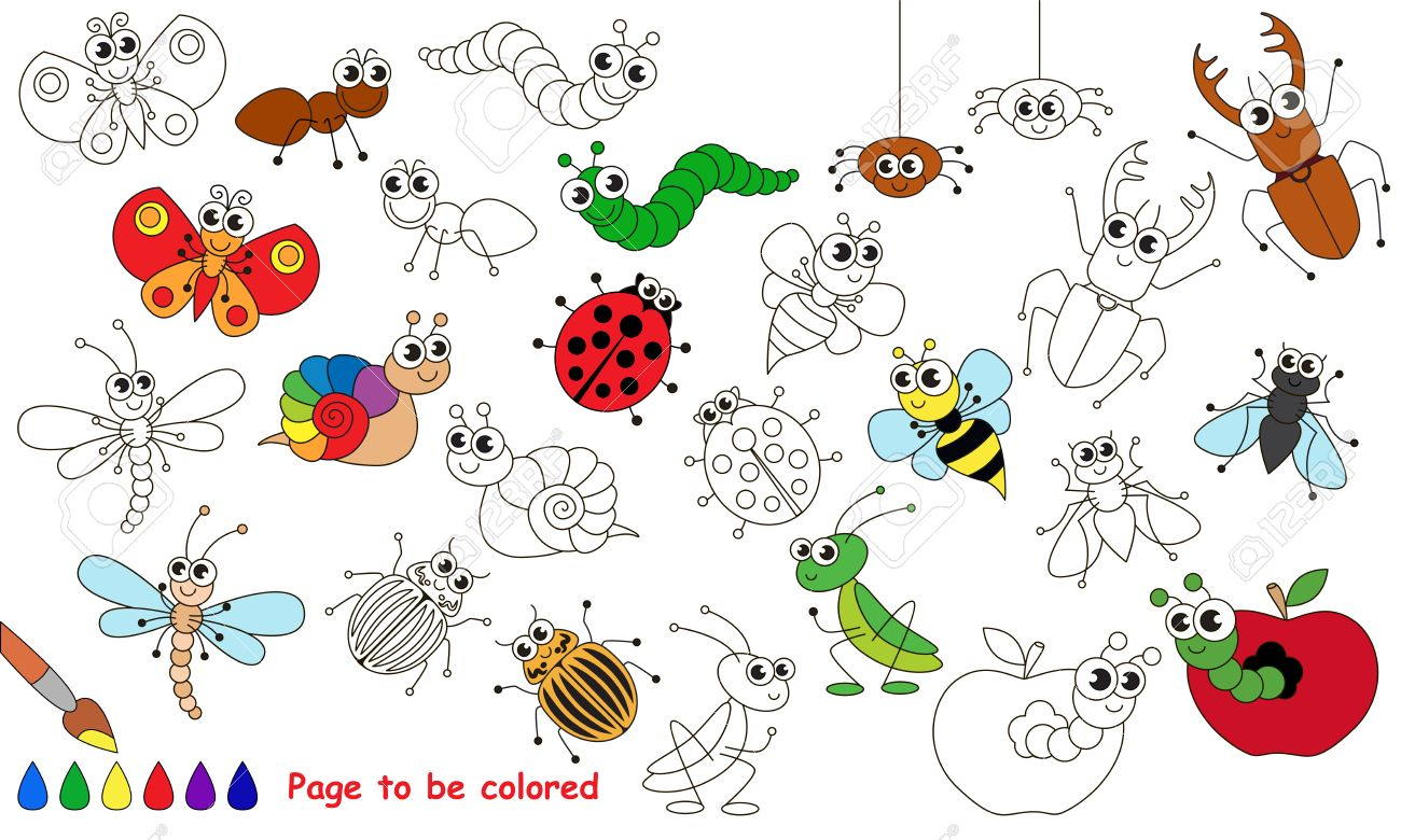 Conjunto De Insectos Divertidos Para Ser Coloreado. Libro De ...