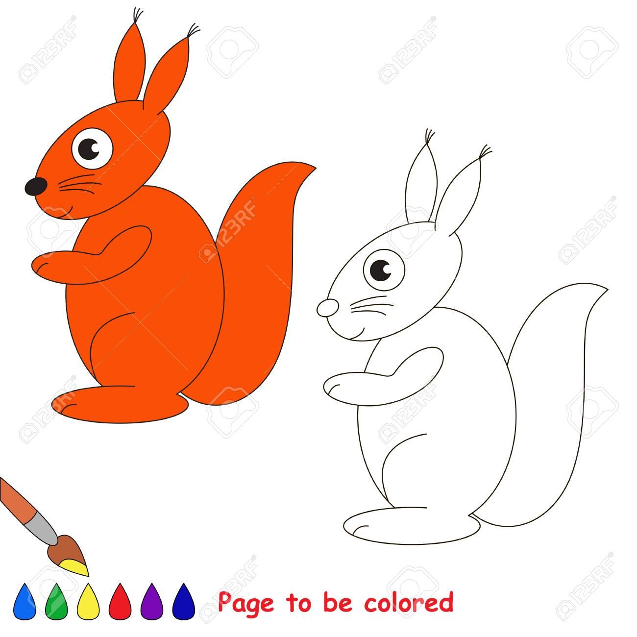 Immagini Stock Lo Scoiattolo Da Colorare Il Libro Da Colorare Per