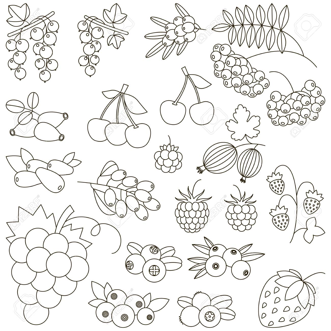 Berry Set To Be Colored Coloring Book To Educate Kids Learn Royalty Free Cliparts Vectors And Stock Illustration Image 74023405