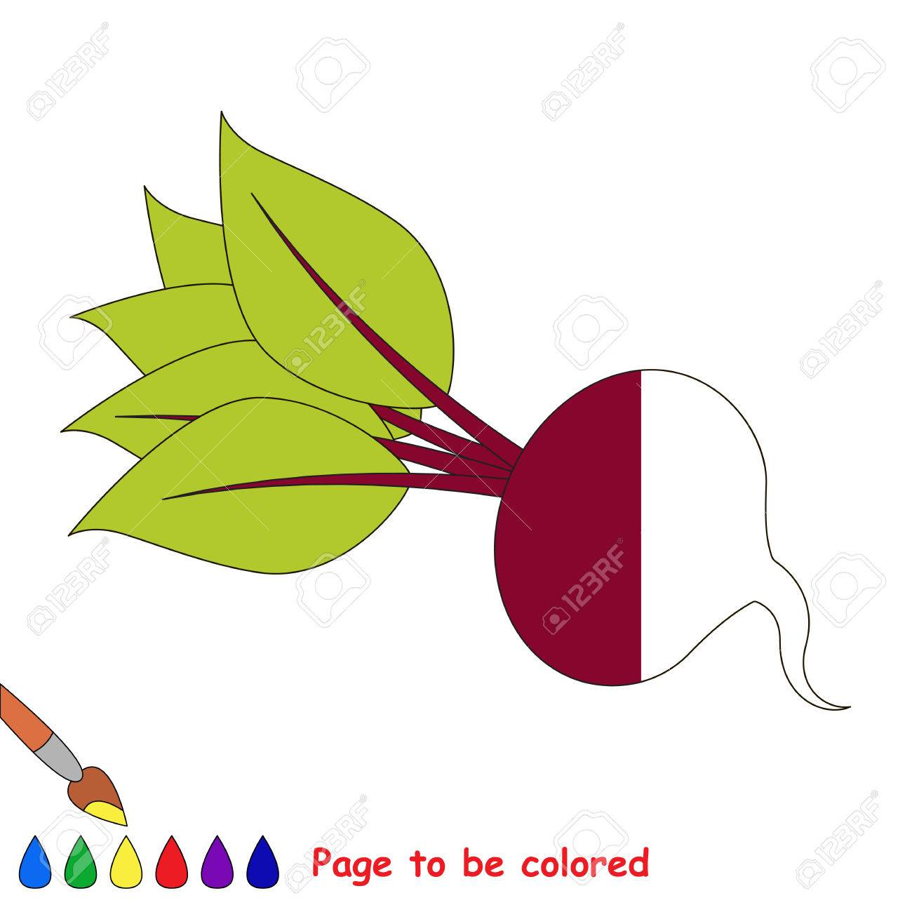 The Beet, The Coloring Book To Educate Preschool Kids With Easy ...