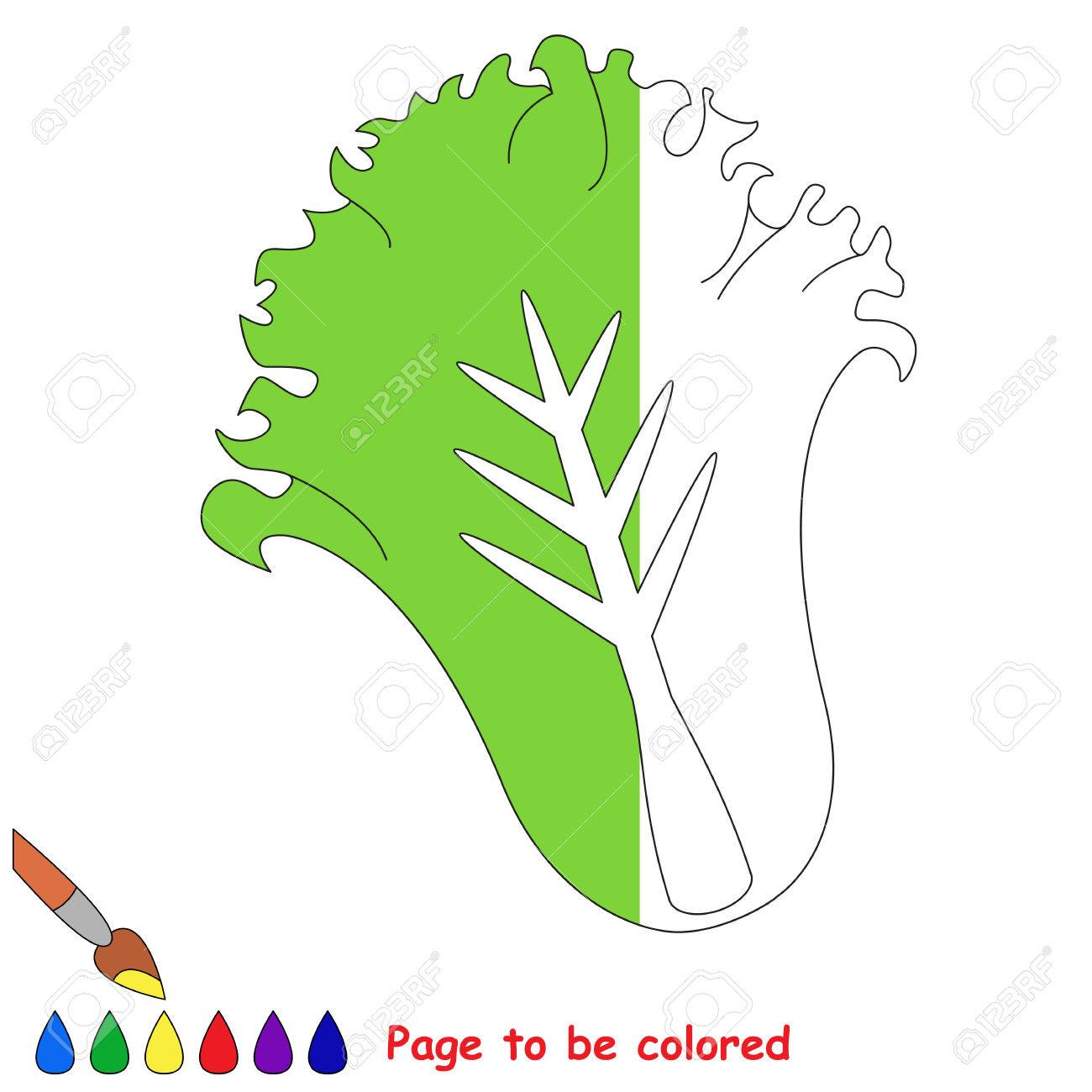 Green Lettuce, The Coloring Book To Educate Preschool Kids With ...