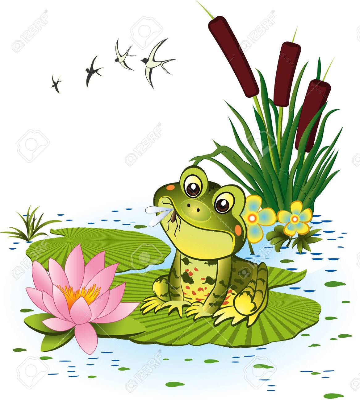 4 943 swamp stock illustrations cliparts and royalty free swamp vectors rh 123rf com swamp scene clipart swamp monster clipart