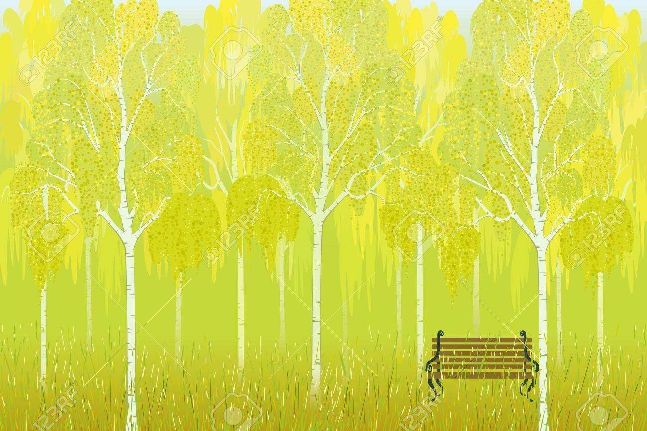 Bench on the background of birch trees in autumn park Stock Vector - 9716629
