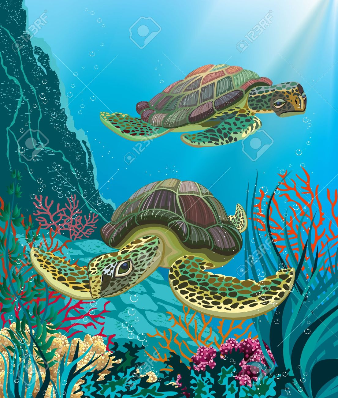 illustration of two sea turtles swimming underwater royalty free
