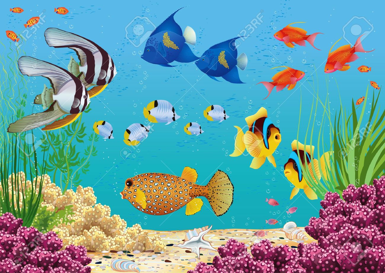 Underwater landscape with various water plants and swimming tropical fish  All objects are grouped Stock Vector - 16276016
