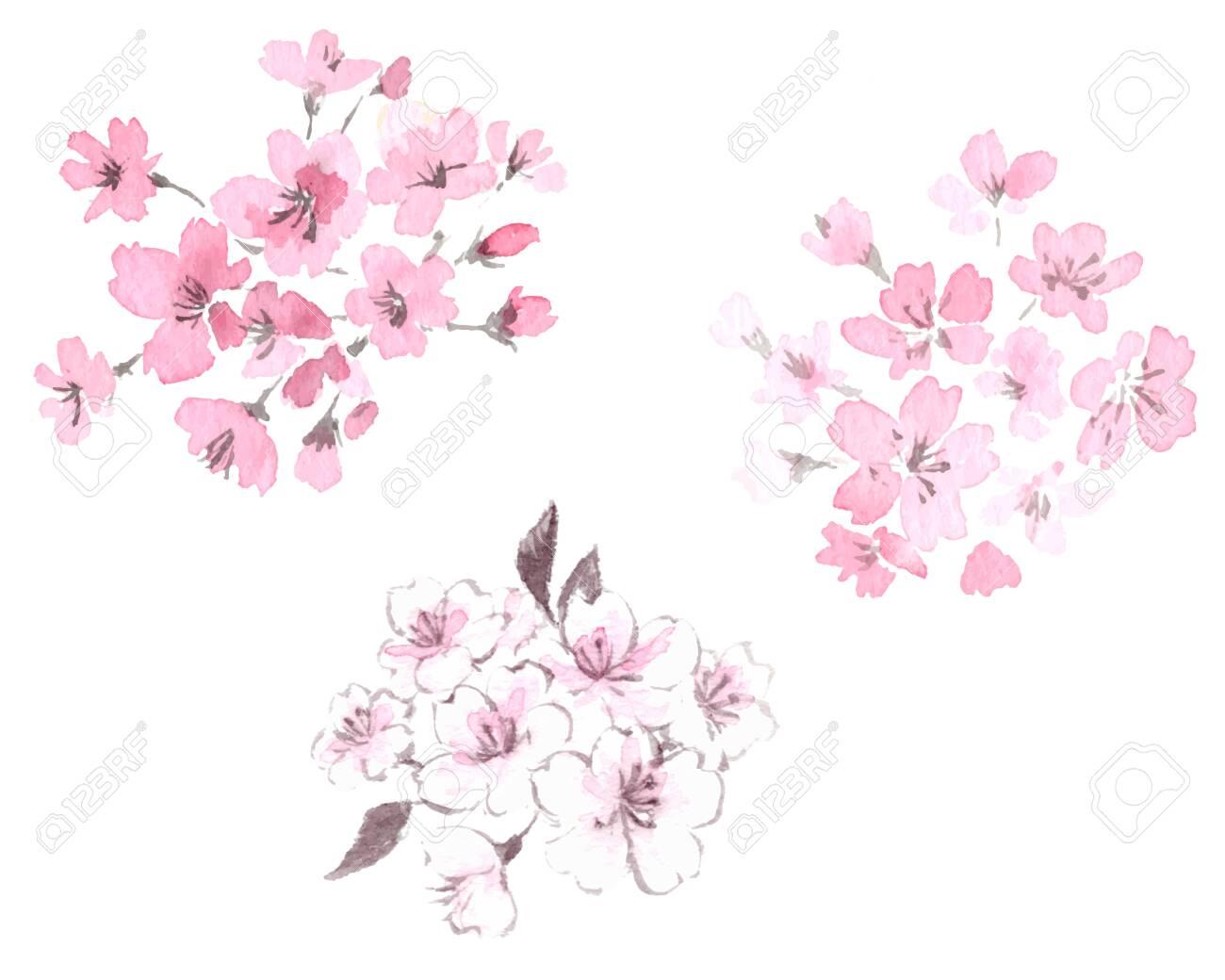 Cherry blossom illustration set - 124531766