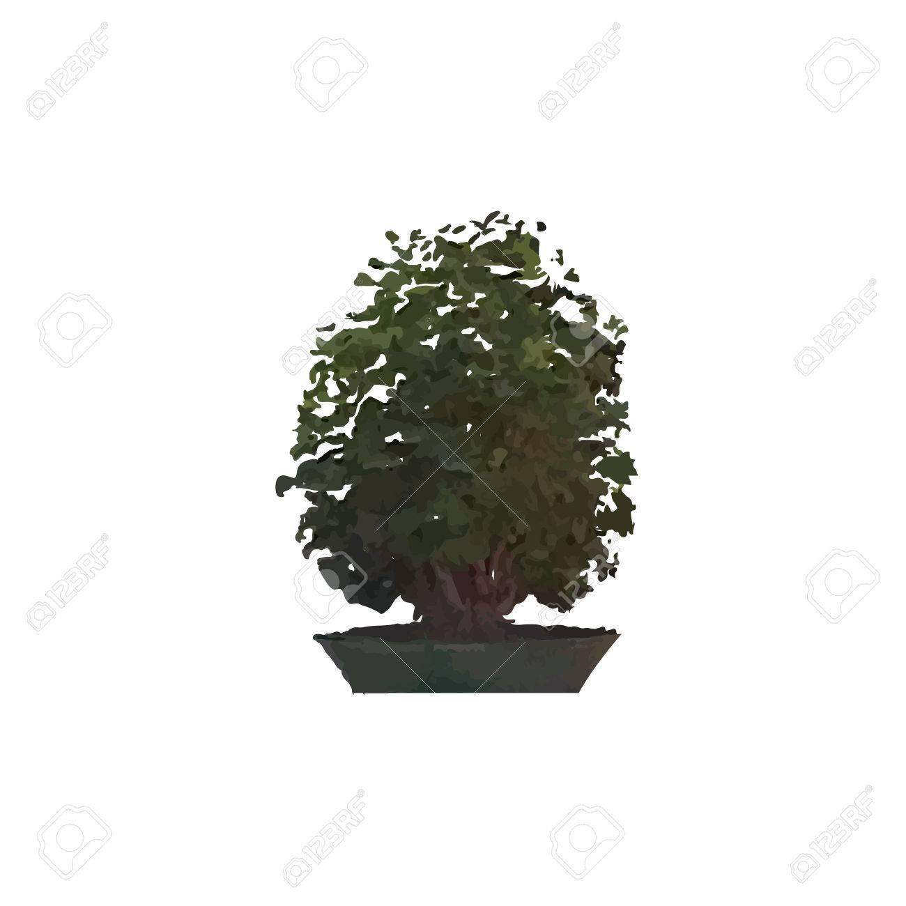 Arbre Miniature Dans Un Pot. Bonsaï D\'intérieur. Clip Art Libres De ...