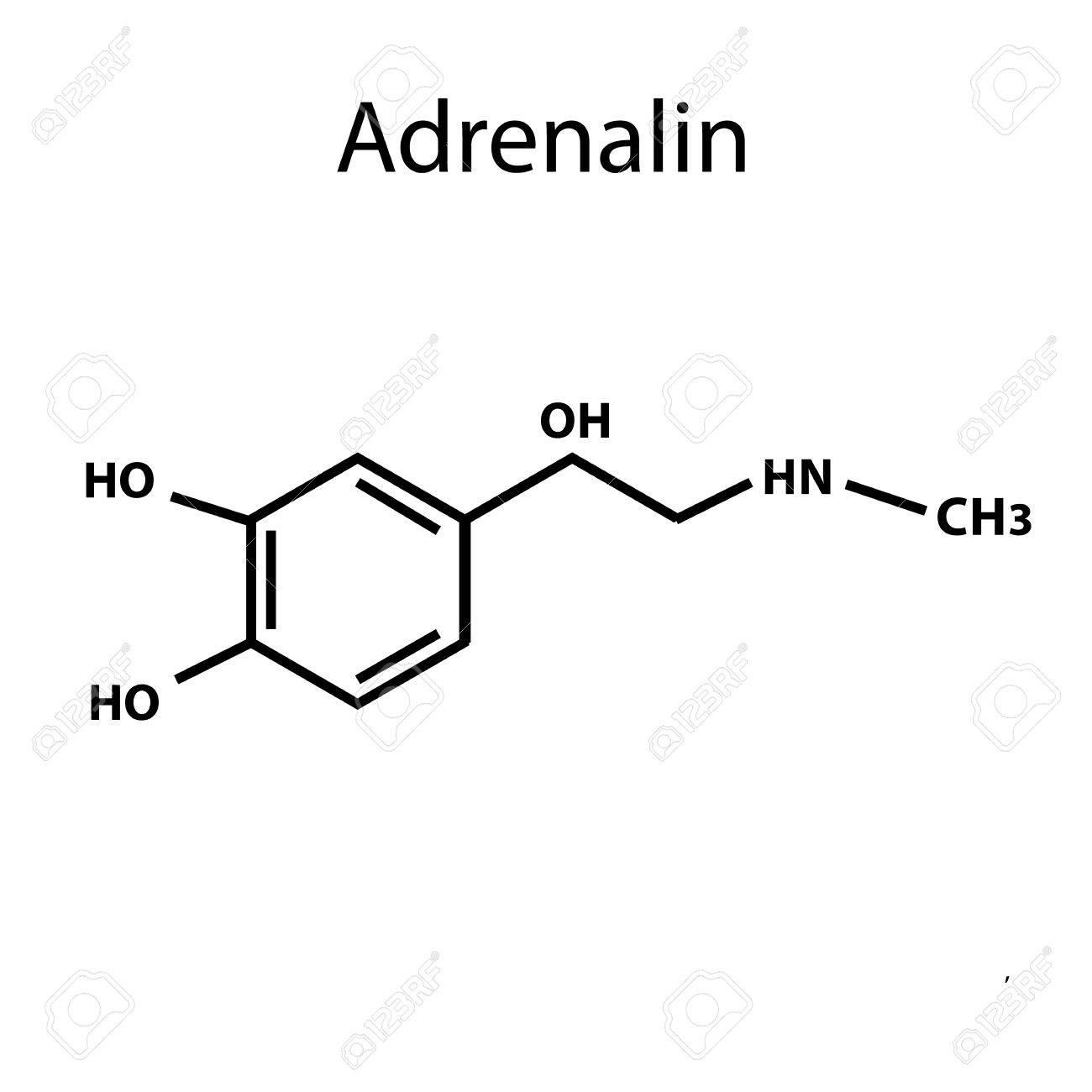 La Adrenalina Es Una Hormona Fórmula Química Ilustración De Vector Sobre Fondo Aislado