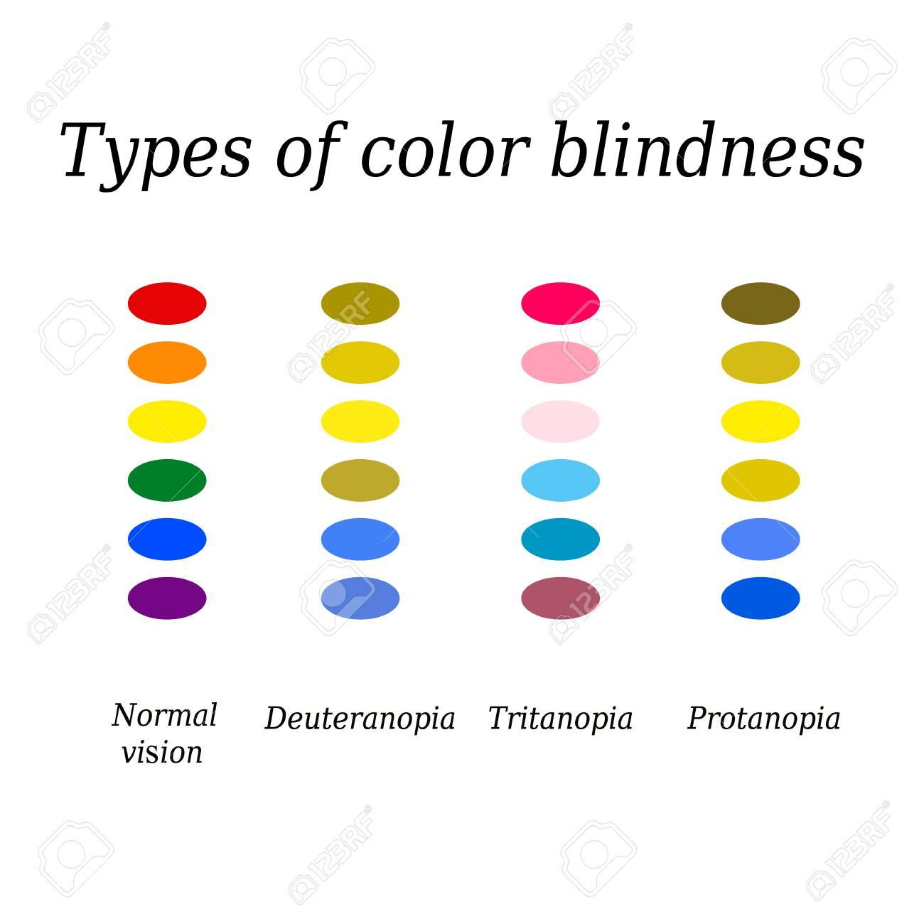 types of perception