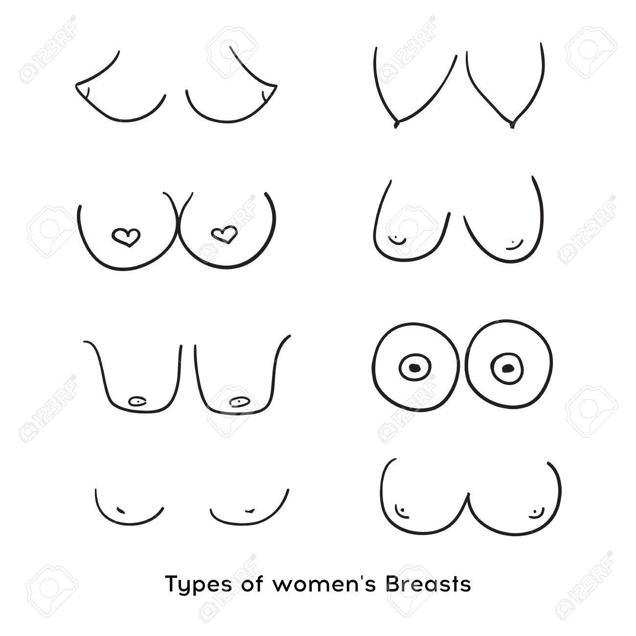 Sperm diagram pics