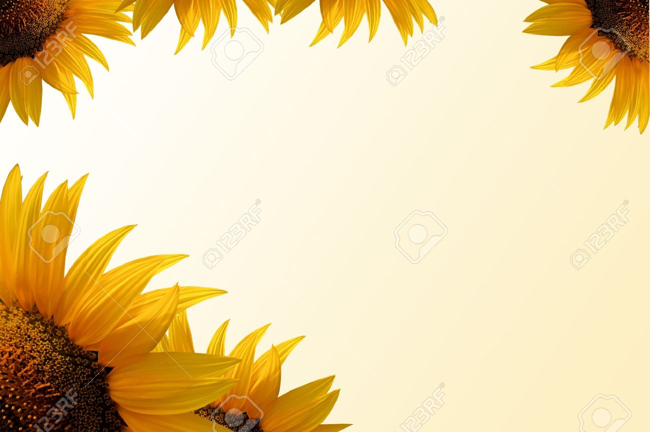 Sunflower Frame, Yellow Gradient Background, Scrapbook Useful Stock ...
