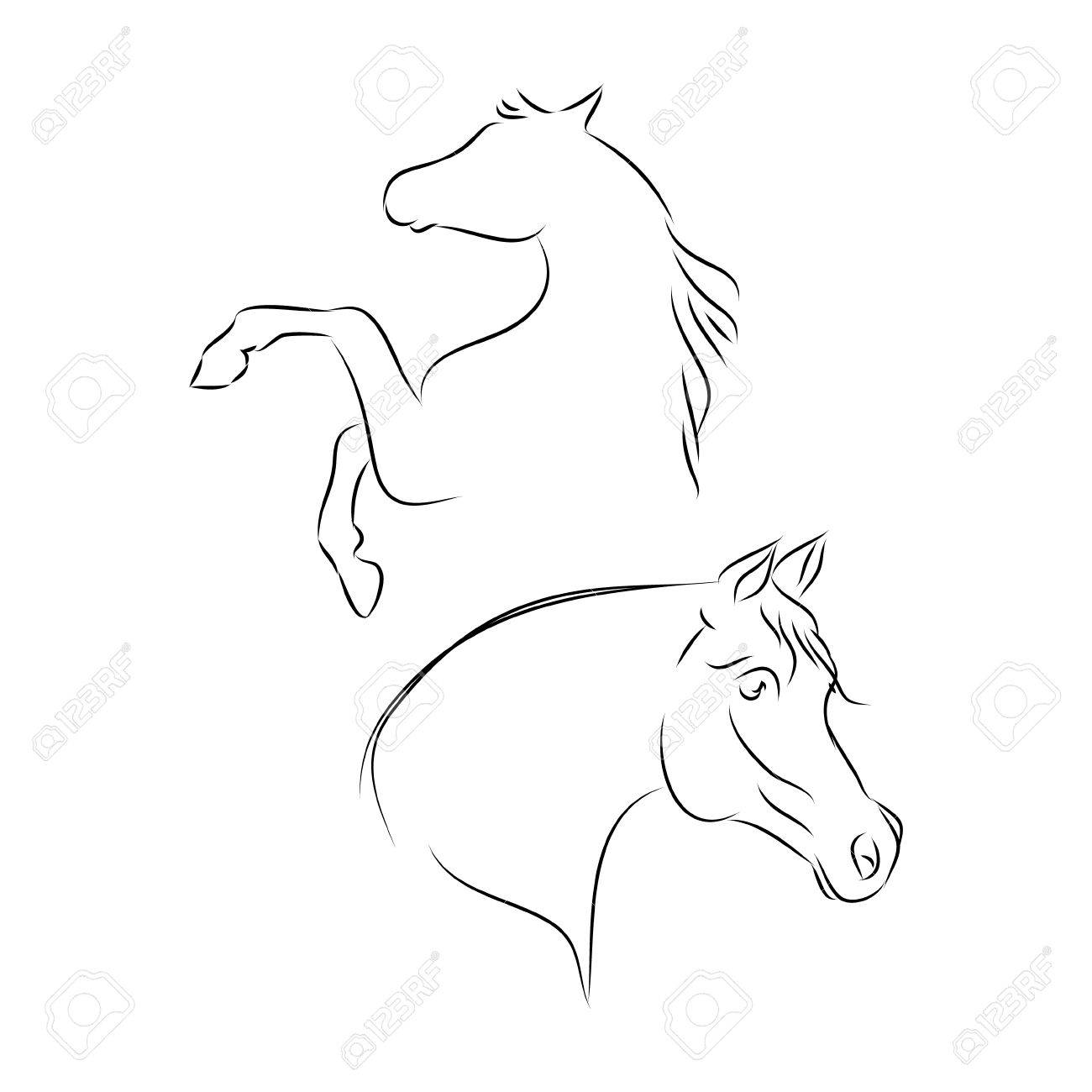 Arabian Horse Head Outline On A White Background Vector Royalty Free Cliparts Vectors And Stock Illustration Image 83738759