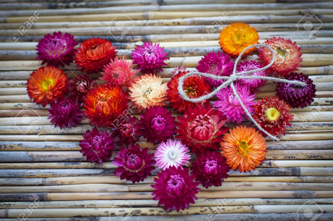 Heart Of Multi-colored Flowers. Background. Stock Photo, Picture And ...