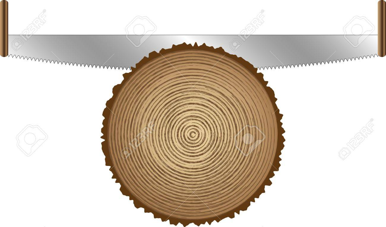 old saws for cutting trees Stock Vector - 12479773
