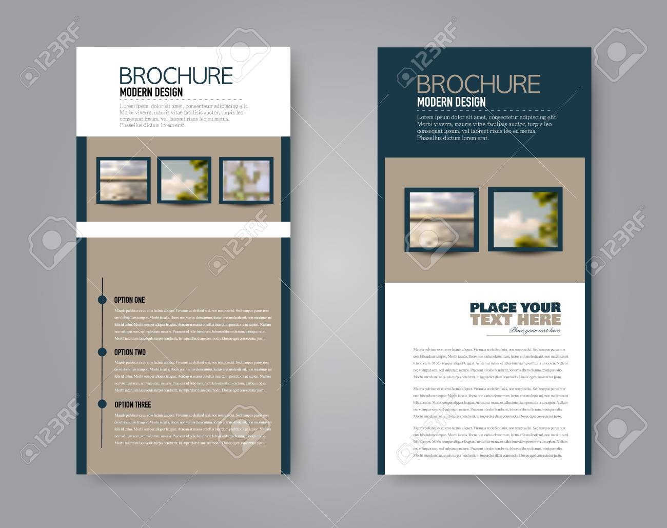 Narrow Flyer And Leaflet Design Set Of Two Side Brochure Templates
