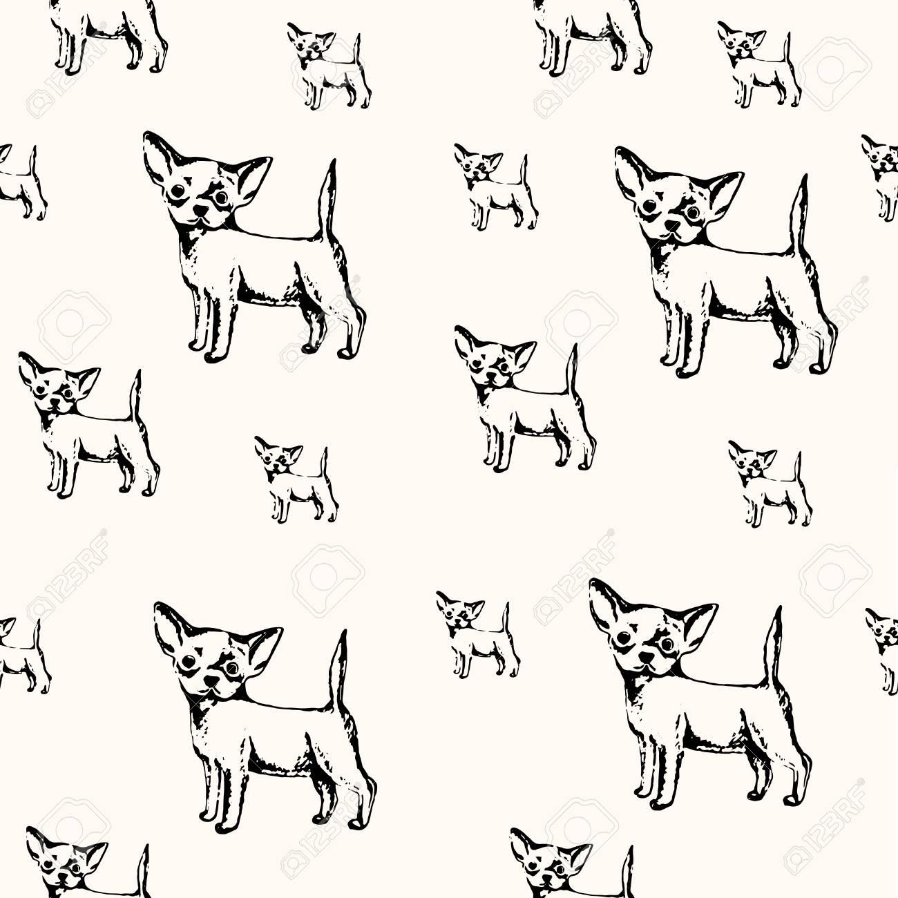 Ilustración Vectorial Pluma Bosquejo Dibujado Del Perrito Chihuahua