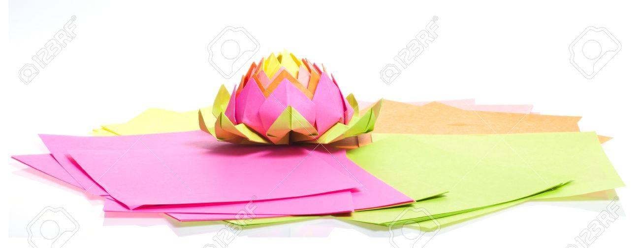 Origami Lotus Flower | 505x1300