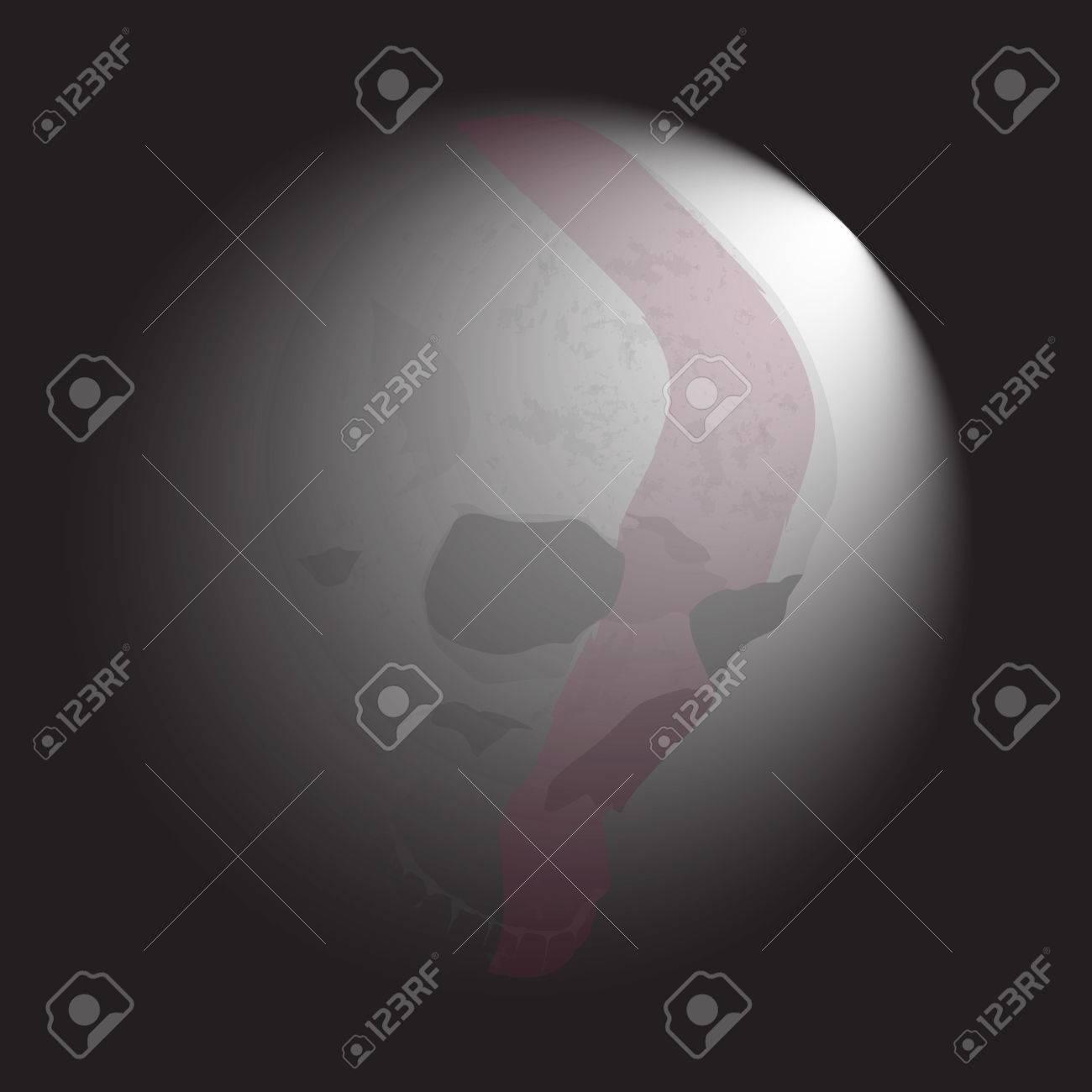 Huesos Del Cráneo Esqueleto Humano Ilustración De La Anatomía ...