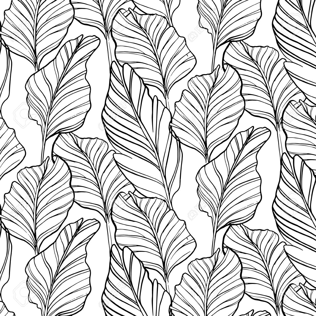 Tropical Seamless Pattern With Nature Leaf Hand Drawn Black Art