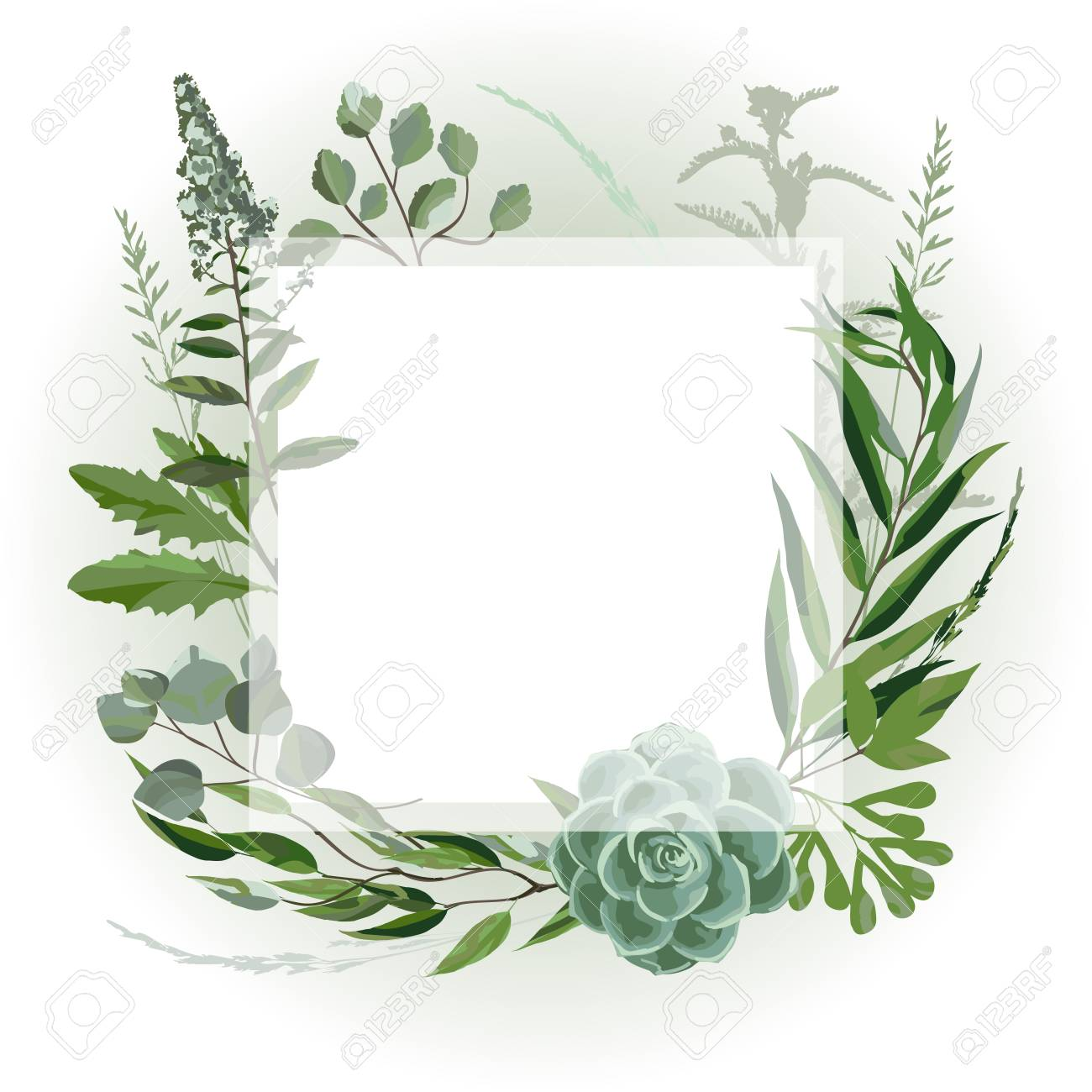 Wedding invitation frame with leaves, succulents, twigs and plants. Herbal garland with greenery and green vegetation. Template design card with tree branches. Vector illustration - 105813545