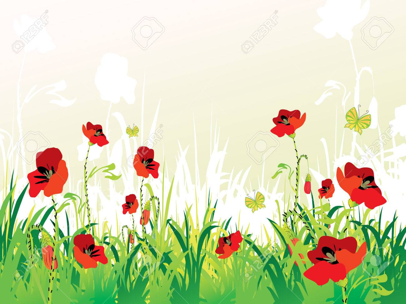red poppies on green field with copy space, vector illustration Stock Vector - 4459084