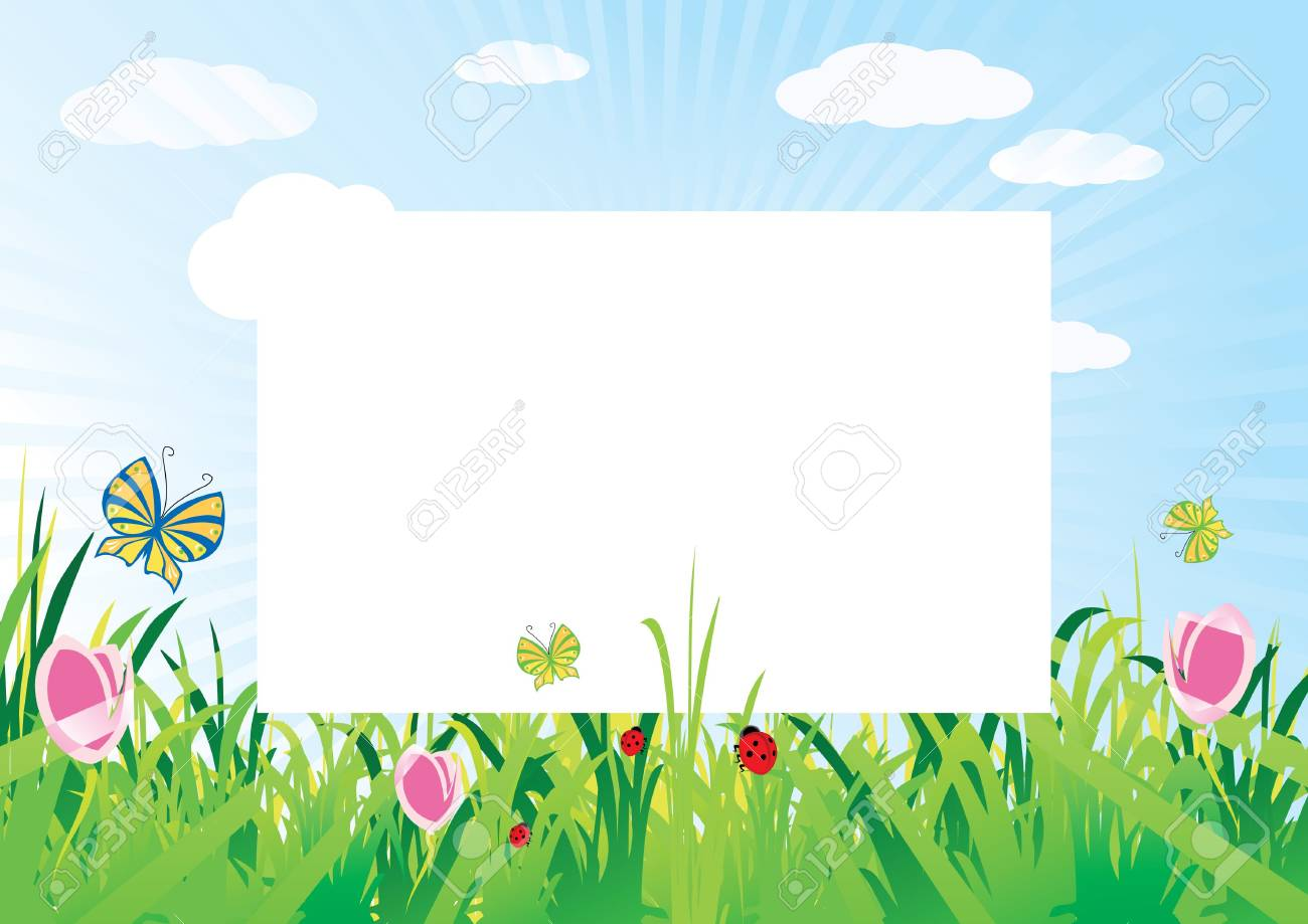 summer meadow background with empty space for text Stock Photo - 5195943