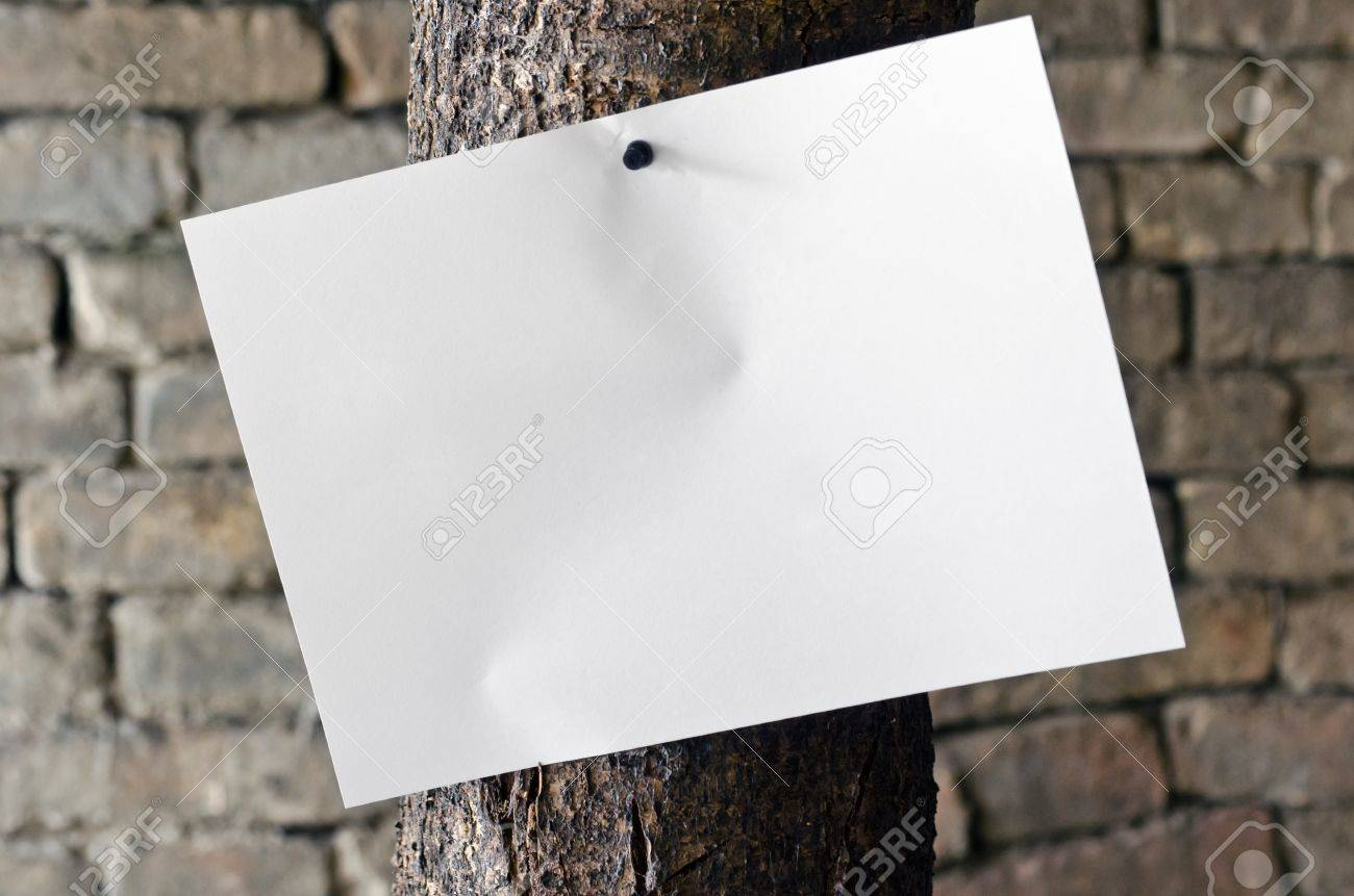 Paper Pinned On Old Tree Over Aged Brick Wall In Background
