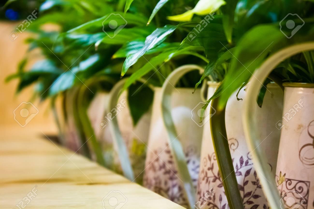 Beautiful flowers in the green room of unusual pot with ornaments beautiful flowers in the green room of unusual pot with ornaments on a table stock photo izmirmasajfo