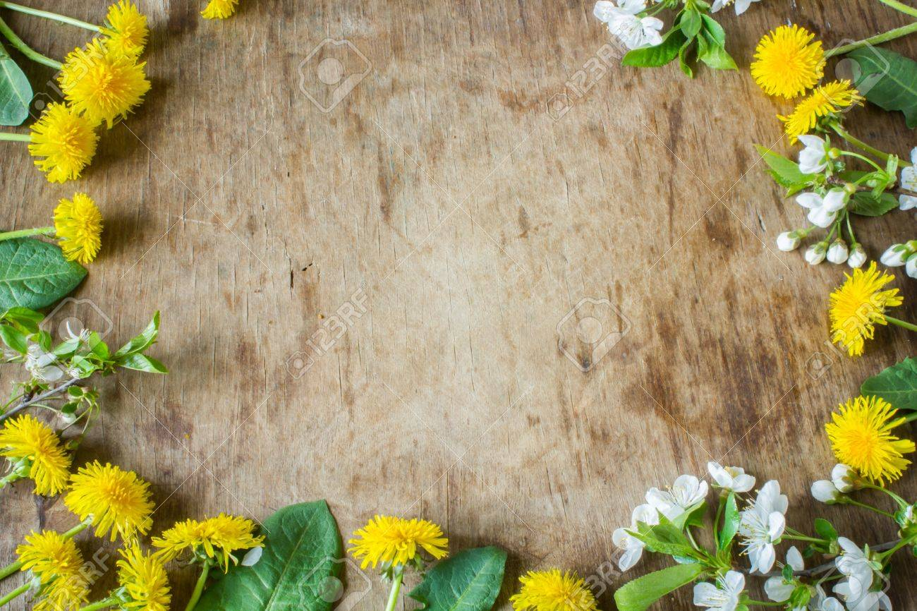 Gentle Colored Spring Flowers Wooden Board Rustic Background Insert Text Stock Photo