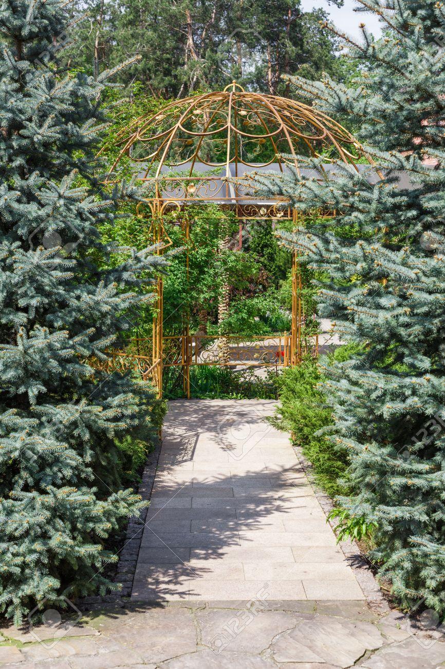 Belle conception de paysage, chemin de jardin gazebo en métal et arbres à  feuilles persistantes dans la lumière du soleil. aménagement moderne:  sapins ...