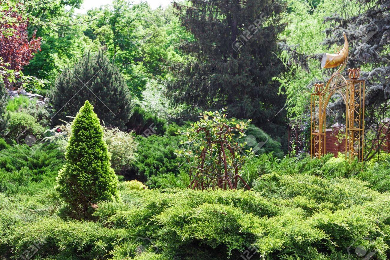 Beautiful Landscape Design, Evergreen Trees And Shrubs In Sunlight. Modern  Landscaping: Fir Trees