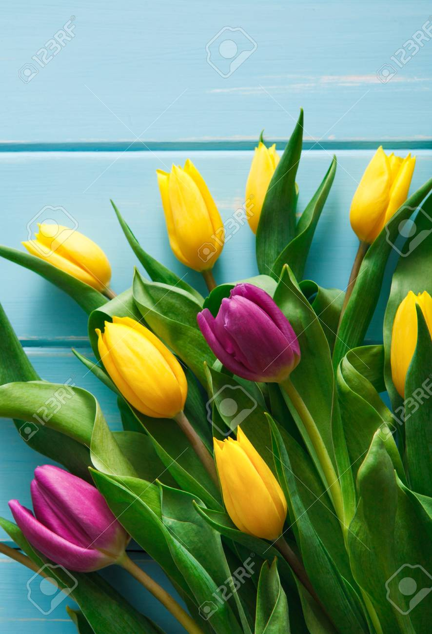 Yellow And Violet Tulips Bouquet On Blue Wood Background Vertical