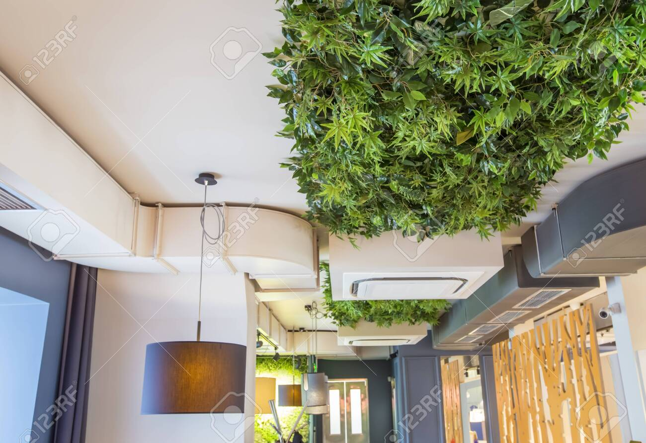 Decoration cafe or coffee shop interior style green eco environmental..