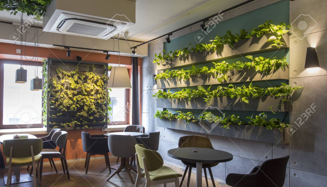 Modern Interior Design Living Wall Plant Decoration Shelves Stock Photo Picture And Royalty Free Image Image 140010787