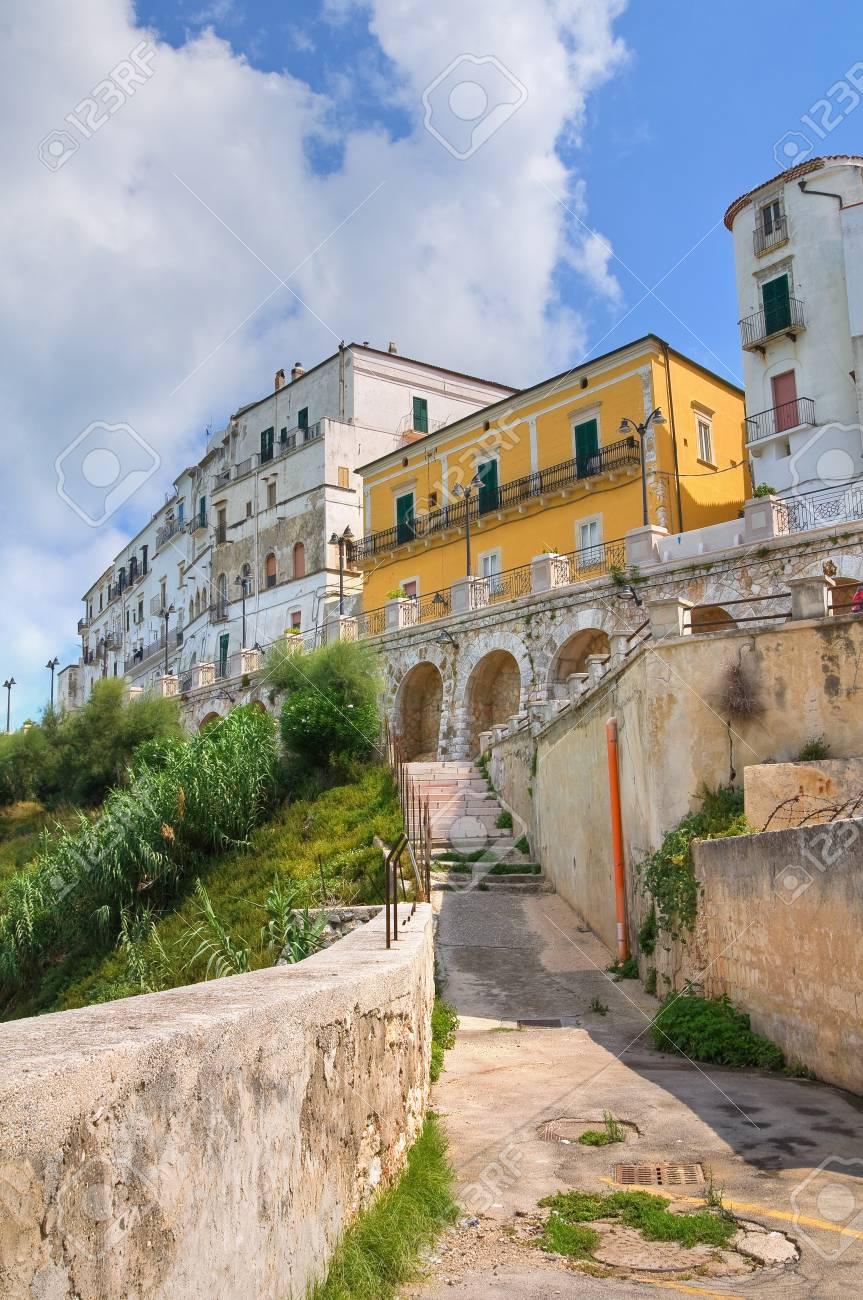 Panoramic view of Rodi Garganico. Puglia. Italy. Stock Photo - 21970027