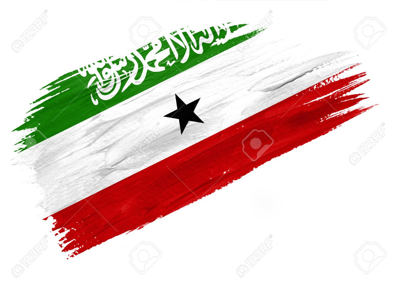 Brush Painted Somaliland Flag Hand Drawn Style Illustration Stock Photo Picture And Royalty Free Image Image 116082558