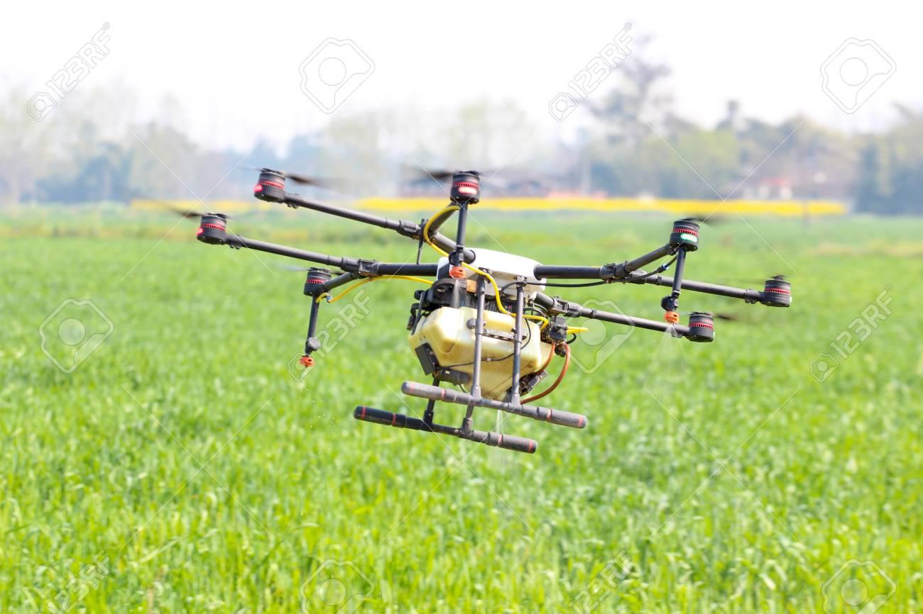 Drone spraying pesticide