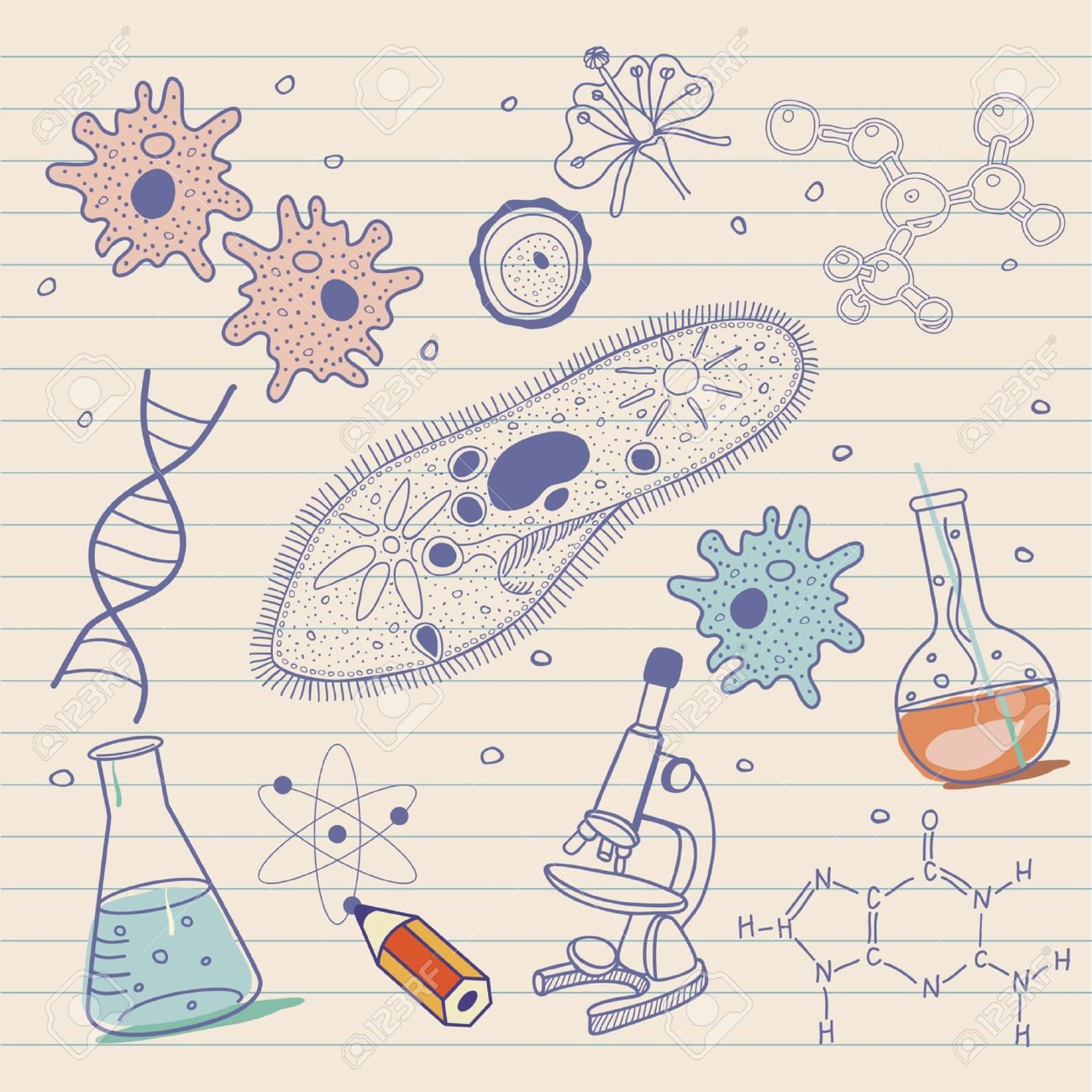 Biology sketches background in vintage style Stock Vector - 17375599