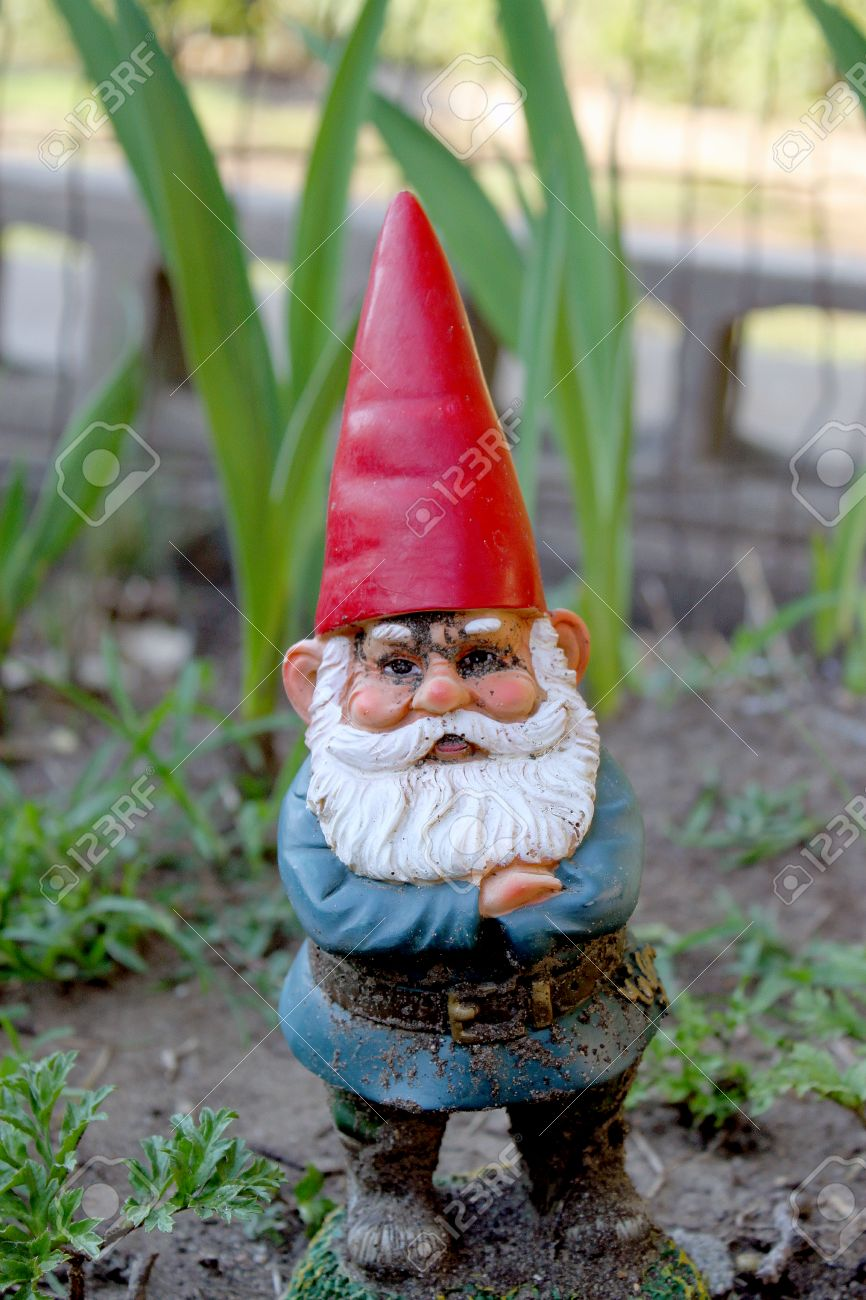 High Quality Garden Gnome Guarding Plants In Garden With Red Hat And White Beard With A  Blue Coat
