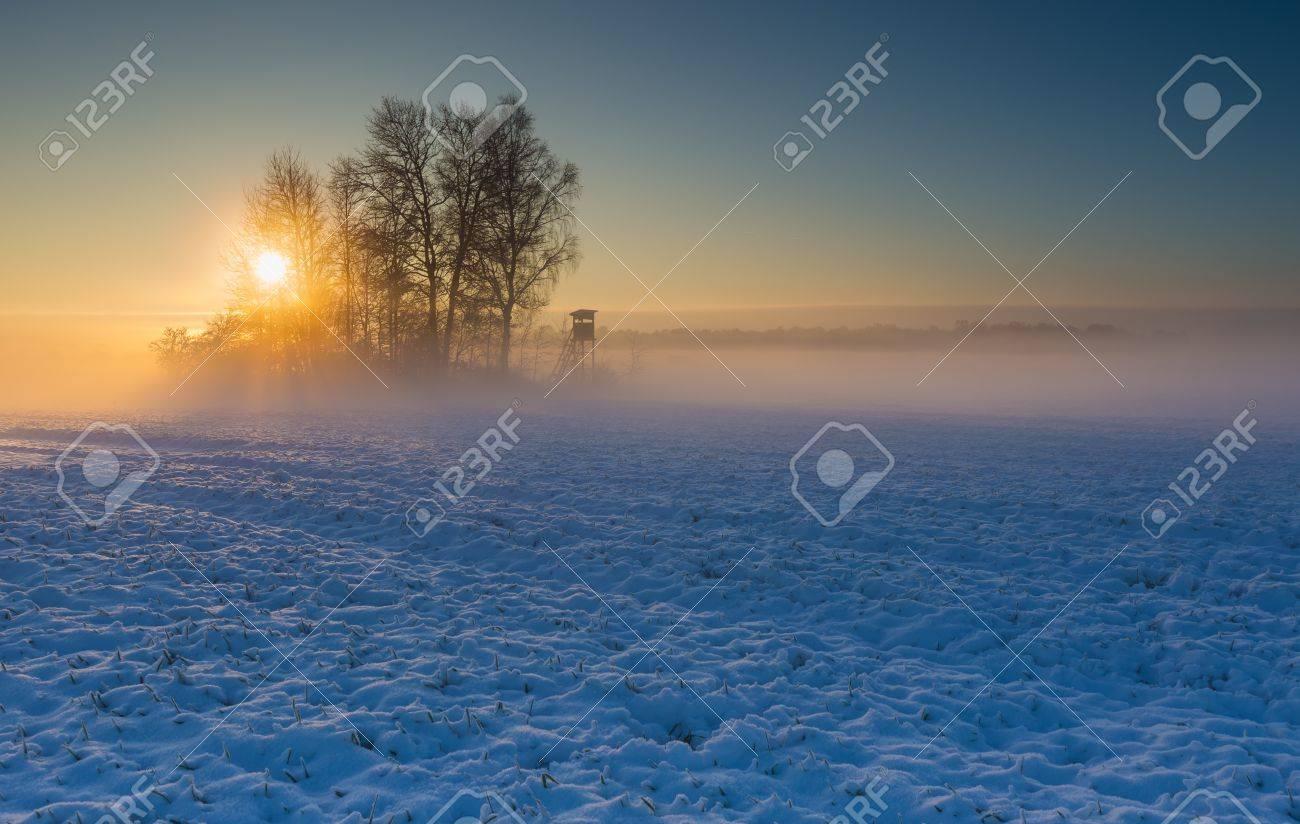 Beautiful winter sunrise or sunset landscape. Sun over agricultural field. - 38510659