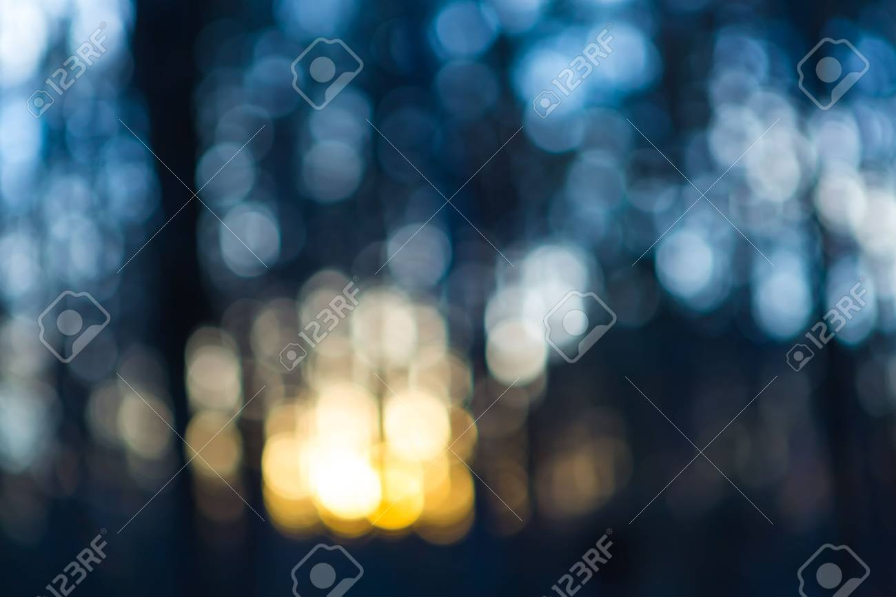 Out of focus lights in forest. defocused blurry bokeh background. - 38667623