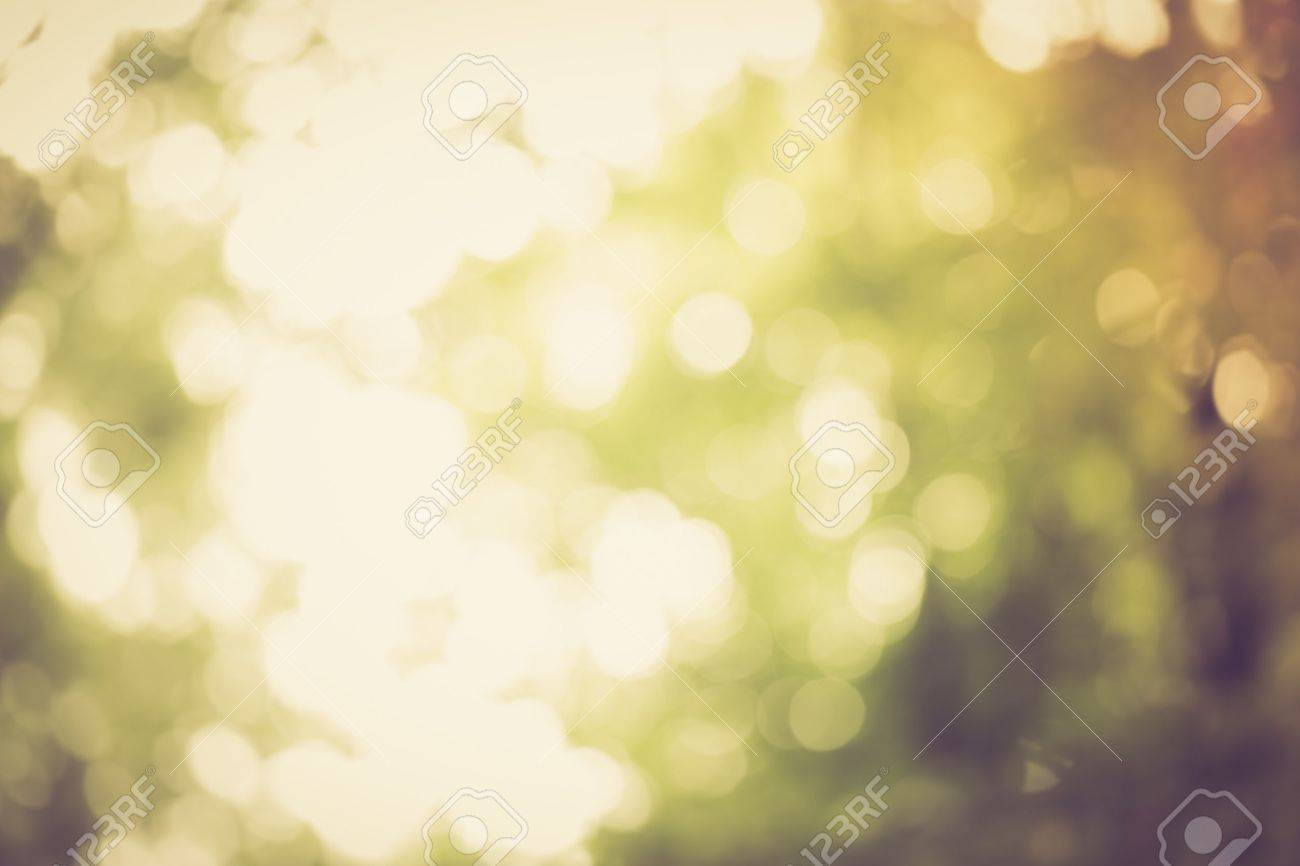 Vintage photo of natural abstract background of defocused forest with bokeh effect. - 44442939
